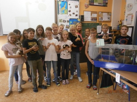 World Animal Day with 5.C