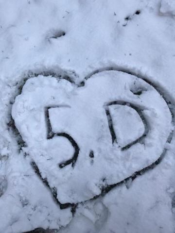 Konečně přišla zima! V 5. D se radujeme a pořádáme soutěž o nejlepšího sněhuláka.