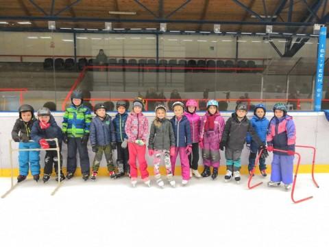 3.D. na ledě